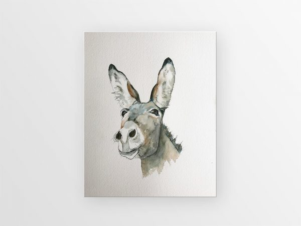 kimmy priggen, watercolour, animal painting, donkey, watercolor