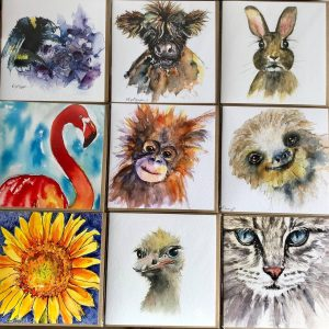 Pack of Nine Animal and Flower Cards