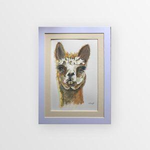 Watercolour Albert the Alpaca