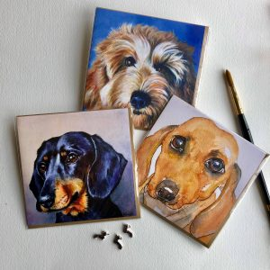 Wagging Tails Collection