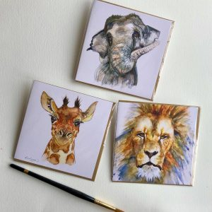 Safari Card Collection
